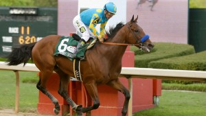 Preakness Stakes Odds -- Can We Get a Decent Trifecta?