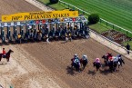Betting on the Preakness -- It Looks Like Pharoah and the Usual Suspects