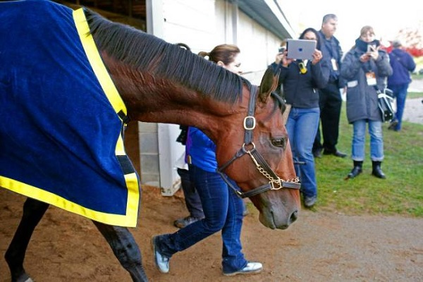 Breeders Cup: A look at the Distaff