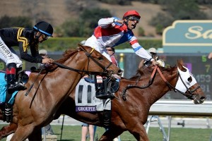 Breeders Cup: A look at the Filly & Mare Sprint