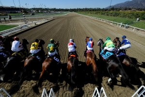 Breeders Cup: A look at the Turf