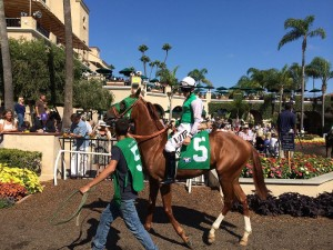 Breeders' Cup Preview: Thirteen of the Best Annual Horse Races on the Planet