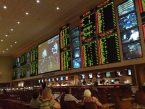 What to Bet On this Week at America's Bookie