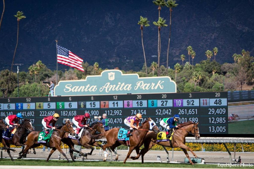 Cash In on the 2016 Breeders' Cup with Pay Per Head