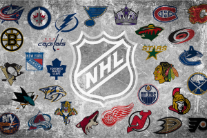 Using Pay Per Head to Build Your NHL Betting Action