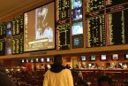 Managing a Packed Betting Board with Pay Per Head