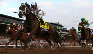 Picks, Predictions and Advice For The 2016 Breeder's Cup Classic