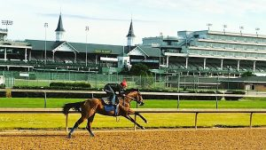 Kentucky Derby Betting Options at Online Sportsbooks