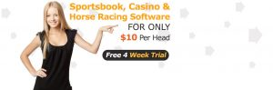 Pay Per Head Online Bookie Software Platforms