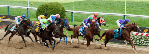 Preakness Stakes Betting Preview